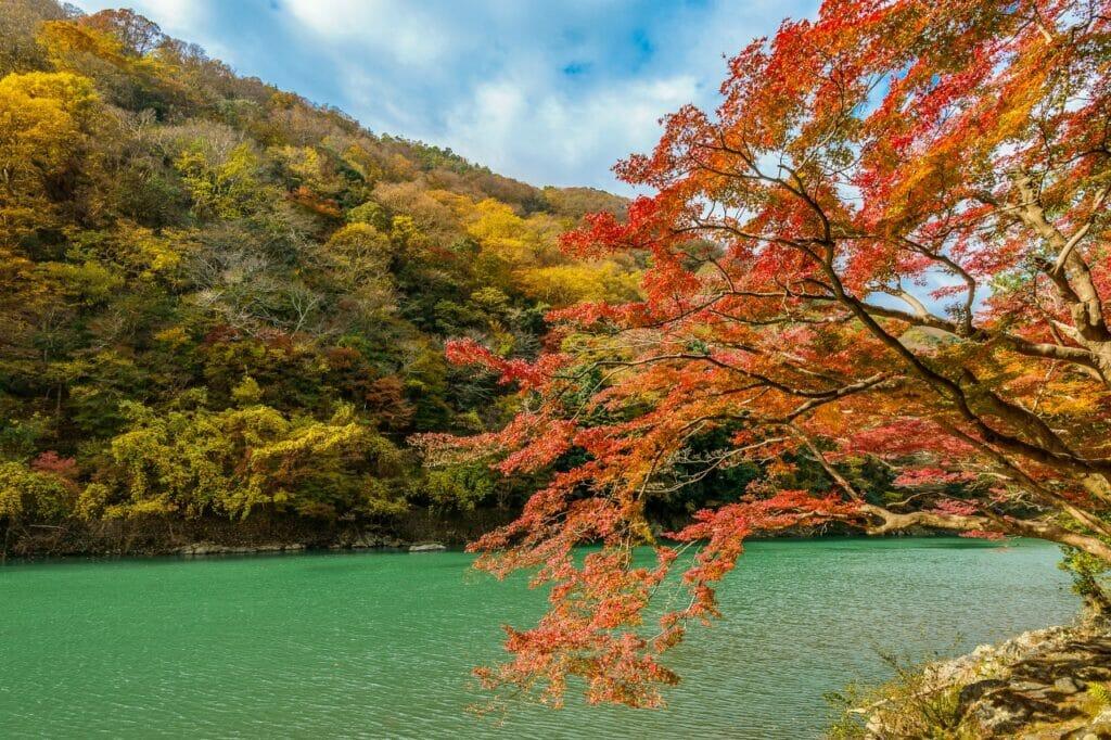 【関西】子供と一緒に週末ドライブ!「嵐山高雄パークウエイ」
